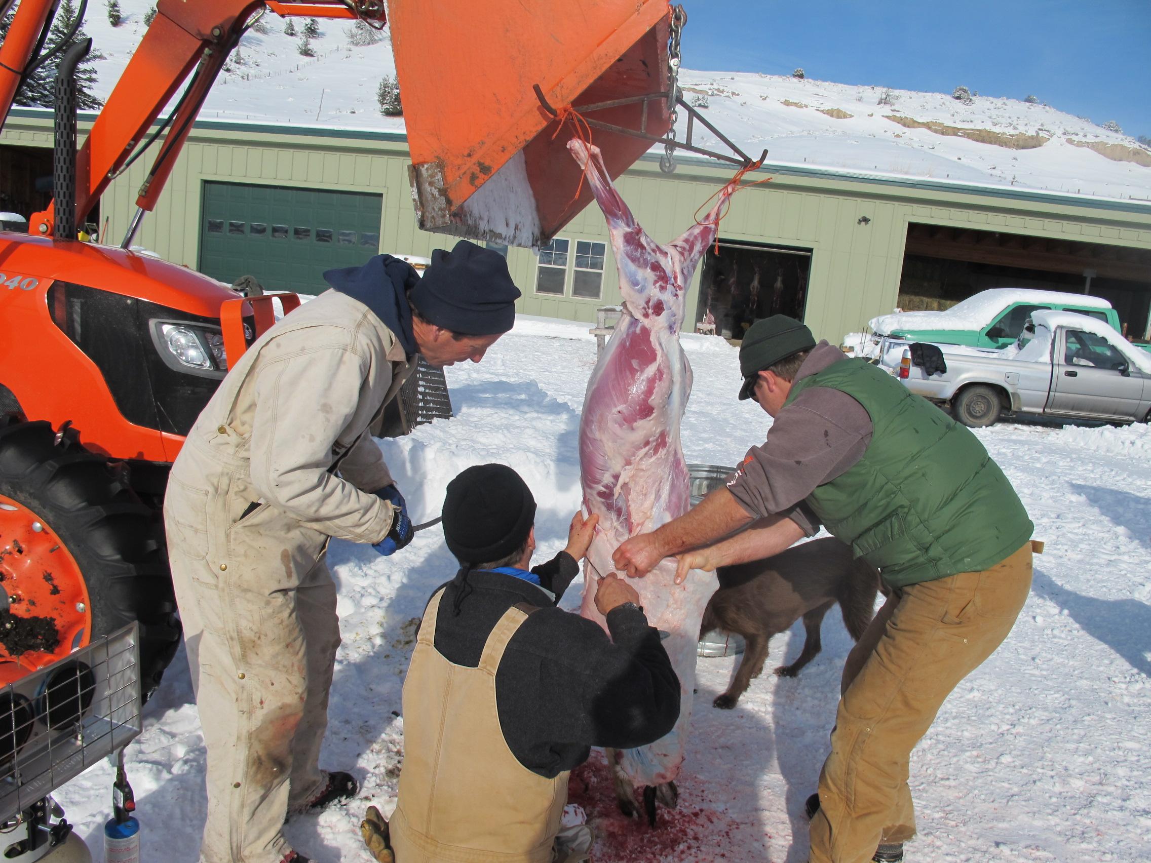 meat arts | Stunt Foodways